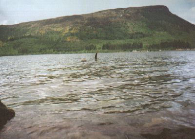 Plesiosaur commonly seen in Loch Ness